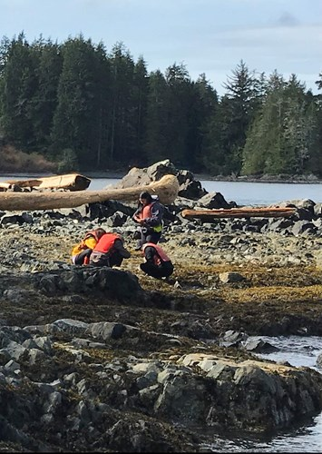 Photo shows a group of students exploring a rocky seashore.