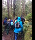 Photo shows a group out for a hike on a rainy day.